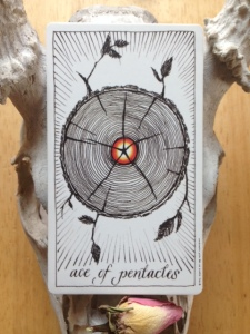 Ace of Pentacles Wild Unknown